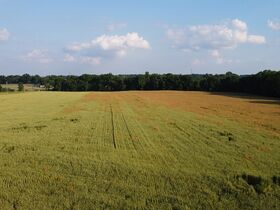 Tremendous Offering of 33 Acres In Wayne County featured photo 12