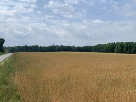 Tremendous Offering of 33 Acres In Wayne County featured photo 1