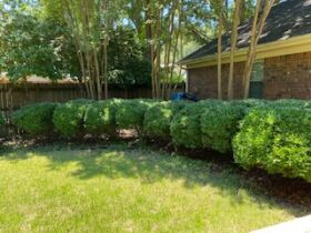 Well Maintained 3 Bedroom Germantown, TN Home featured photo 4