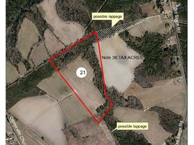 681+/- Acres of Commercial, Agricultural and Residential Tracts in Robeson County featured photo 11