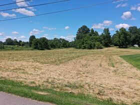 * 15 Acres Vacant Land Absolute Auction * featured photo 1