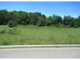 15 Lots at Cumberland Trails Subdivision at Absolute Online Auction featured photo 12