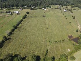 269 +/- Acres, 19 +/- Acres and Timber to be sold at Absolute Auction featured photo 2