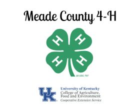 MEADE COUNTY FAIR 4-H & FFA YOUTH LIVESTOCK AUCTION - WED, JULY 28 @ 5:00 PM EDT featured photo 2