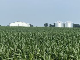 Chamberlain Family Estate - 222 Acres of Shelby County Farmland featured photo 8