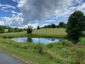 Court Ordered Auction - Brick Ranch Home on 20.9 Acres featured photo 3