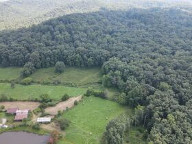 72.6 Acres in Tracts - Absolute Live Auction featured photo 5