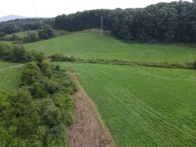72.6 Acres in Tracts - Absolute Live Auction featured photo 10
