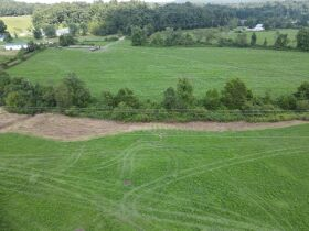 72.6 Acres in Tracts - Absolute Live Auction featured photo 6