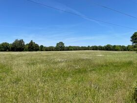 House, Barns & Outbuildings on 25+/- Acres Offered in 3 Tracts - Auction July 31st featured photo 9