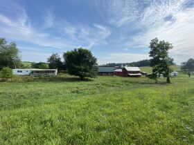 Absolute Estate Auction - 61.83 Acres with Several Barns - Offered in 4 tracts featured photo 6