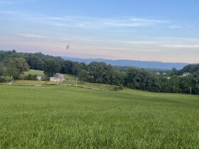 Absolute Estate Auction - 61.83 Acres with Several Barns - Offered in 4 tracts featured photo 4