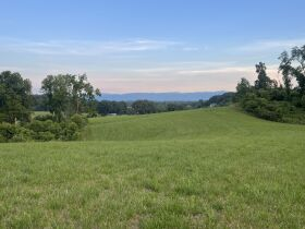 Absolute Estate Auction - 61.83 Acres with Several Barns - Offered in 4 tracts featured photo 5
