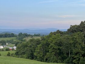 Absolute Estate Auction - 61.83 Acres with Several Barns - Offered in 4 tracts featured photo 11