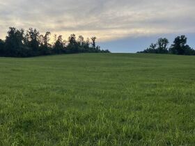 Absolute Estate Auction - 61.83 Acres with Several Barns - Offered in 4 tracts featured photo 12