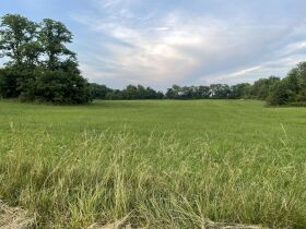 Absolute Estate Auction - 36.93 Acres with Barn & Creek featured photo 4