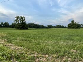 Absolute Estate Auction - 36.93 Acres with Barn & Creek featured photo 8