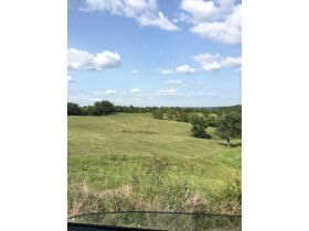 24.46 ACRES IN LAWRENCEBURG, KY, OVERLOOKS TAYLORSVILLE LAKE WOODS FOR HUNTING featured photo 5