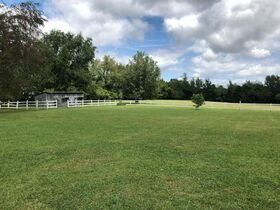 3 BR, 3 BA Ranch Home on 6.14+/- Acres with Outbuildings - Country Living with City Amenities! Auction August 14th featured photo 6