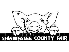 Shiawassee County Fair Beef LIVE/ONLINE Auction featured photo 1
