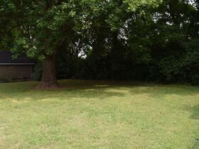 NOW SELLING ABSOLUTE! 3 Bedroom, 1 Bath Move-In Ready Home - Walk to MTSU - Online Auction ends August 19th featured photo 11