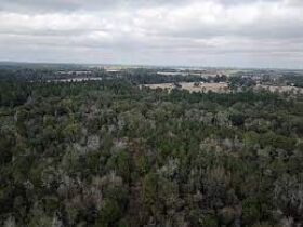 20±Acres | Great Recreational Tract | Indian Creek Frontage featured photo 2