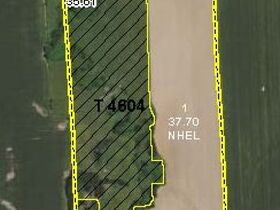 RURAL HOME & 78 TOTAL ACRES Offered in 2 TRACTS featured photo 7