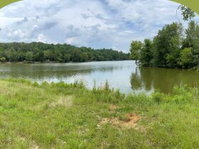 Absolute Auction - 9.2 Riverfront Acreage, 33510 Highway 72 N, Loudon, TN 37774 featured photo 7