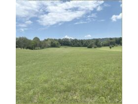 Absolute Auction - 9.2 Riverfront Acreage, 33510 Highway 72 N, Loudon, TN 37774 featured photo 8