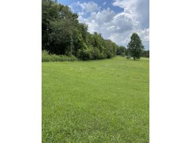 Absolute Auction - 9.2 Riverfront Acreage, 33510 Highway 72 N, Loudon, TN 37774 featured photo 12
