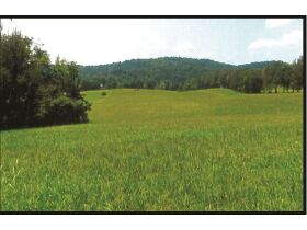 Absolute Auction - 9.2 Riverfront Acreage, 33510 Highway 72 N, Loudon, TN 37774 featured photo 3