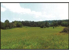 Absolute Auction - 9.2 Riverfront Acreage, 33510 Highway 72 N, Loudon, TN 37774 featured photo 2