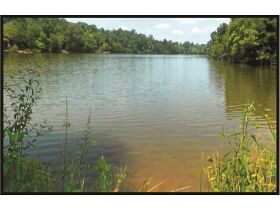 Absolute Auction - 9.2 Riverfront Acreage, 33510 Highway 72 N, Loudon, TN 37774 featured photo 1