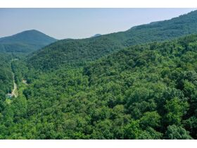New River Highway Hwy, Bricveville, TN 37710 $199,900 featured photo 5