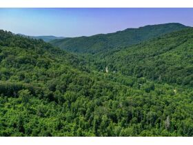 New River Highway Hwy, Bricveville, TN 37710 $199,900 featured photo 6