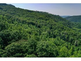 New River Highway Hwy, Bricveville, TN 37710 $199,900 featured photo 7