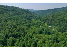 New River Highway Hwy, Bricveville, TN 37710 $199,900 featured photo 8
