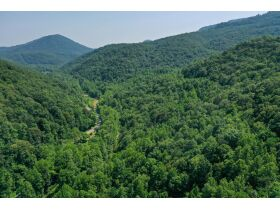 New River Highway Hwy, Bricveville, TN 37710 $199,900 featured photo 9