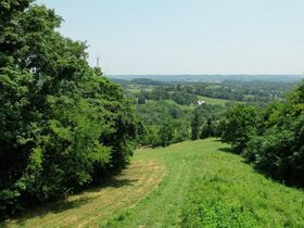 Gorgeous 20+/- Acres with Breathtaking Elevated Views - For Sale in Bell Buckle featured photo 3