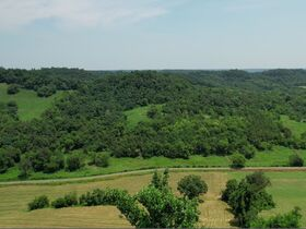 Gorgeous 20+/- Acres with Breathtaking Elevated Views - For Sale in Bell Buckle featured photo 4