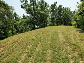 Gorgeous 20+/- Acres with Breathtaking Elevated Views - For Sale in Bell Buckle featured photo 10
