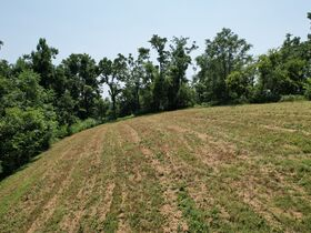 Gorgeous 20+/- Acres with Breathtaking Elevated Views - For Sale in Bell Buckle featured photo 11