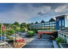 Southern Lodging  Summit Online Auction featured photo 5