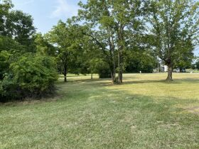 11 Acre MOL Real Estate Auction featured photo 6