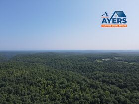 Online Only 360 acres adjoining the Big South Fork National Park in 6 tracts from 16 ac to 91 ac each featured photo 3