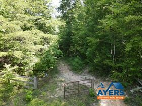 Online Only 360 acres adjoining the Big South Fork National Park in 6 tracts from 16 ac to 91 ac each featured photo 2