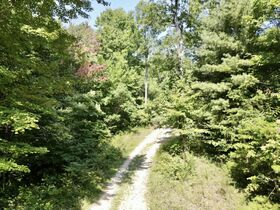 Online Only 360 acres adjoining the Big South Fork National Park in 6 tracts from 16 ac to 91 ac each featured photo 4