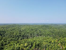 Online Only 360 acres adjoining the Big South Fork National Park in 6 tracts from 16 ac to 91 ac each featured photo 5