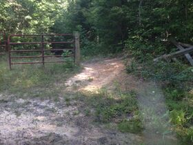 Online Only 360 acres adjoining the Big South Fork National Park in 6 tracts from 16 ac to 91 ac each featured photo 7