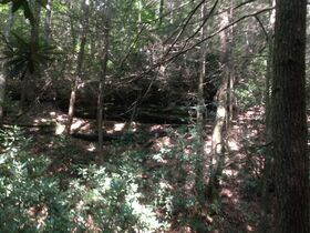 Online Only 360 acres adjoining the Big South Fork National Park in 6 tracts from 16 ac to 91 ac each featured photo 9